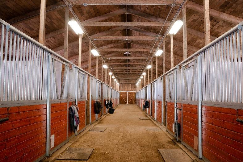 horse-barn-animal-sport-paddock-equestri