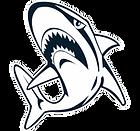henley-logo4.png