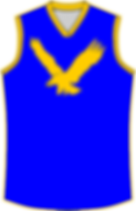 1965 to 1977 Henley Eagles.png