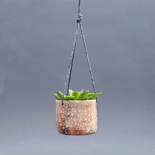 Hanging Succulent Holders