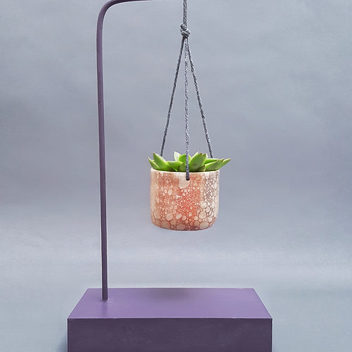 Succulent Holder Stand