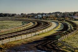 Byerley Park-110
