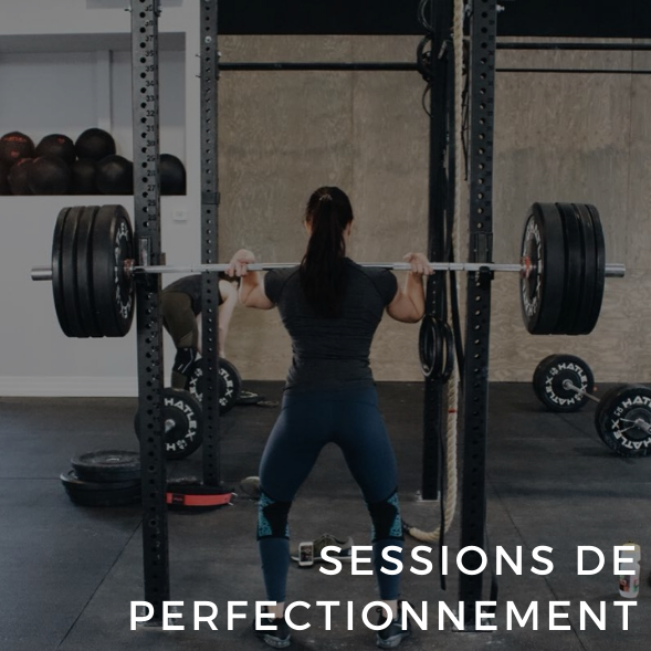 Sessions de perfectionnement