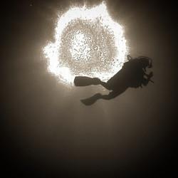 Shadow diving.jpe