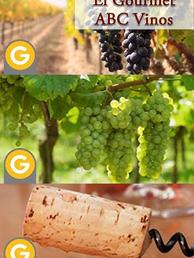 7 - El Gourmet ABC Vinos.png