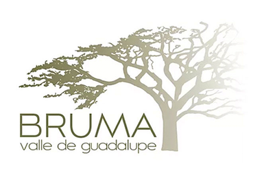 40-Bruma.png