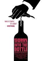3 - Somm Into The bottle.jpg