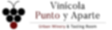 LOGO VPYA 2019 DIRECTORIO.png