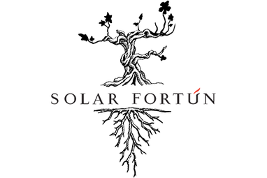 34-Solar-Fortun.png