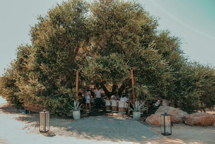 RestauranteRDVM45.jpg