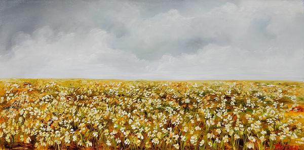 Daisy Field Forever h18 w36.jpg