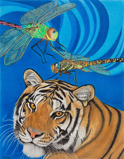 Tiger's Fly Coalescence