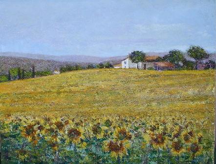Sunflowers in Tuscany 27.5x35.5.jpeg