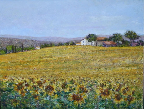 Sunflowers in Tuscany 27.5x35.5.jpeg