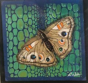 Moth #1 framed h7 w7.jpg