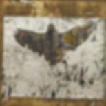 Raven 2 10x10.jpg