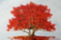 Fall Encounter h40 w60.jpg