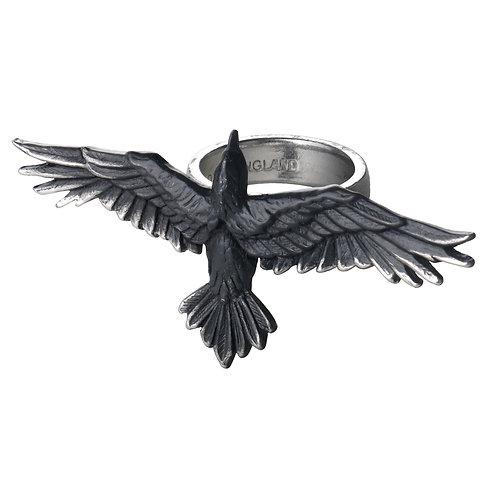 ALCHEMY GOTHIC R205 BLACK CONSORT