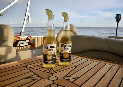 fort myers boat tours fort myers sightse