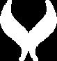 satori-logo-white_edited.png