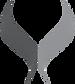 satori-logo-NT.png