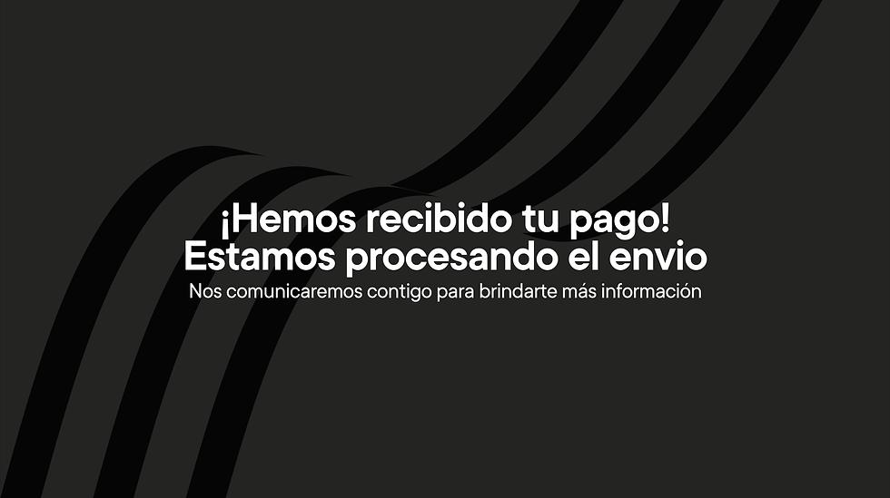 MICROSITIO PAGOS -07.png