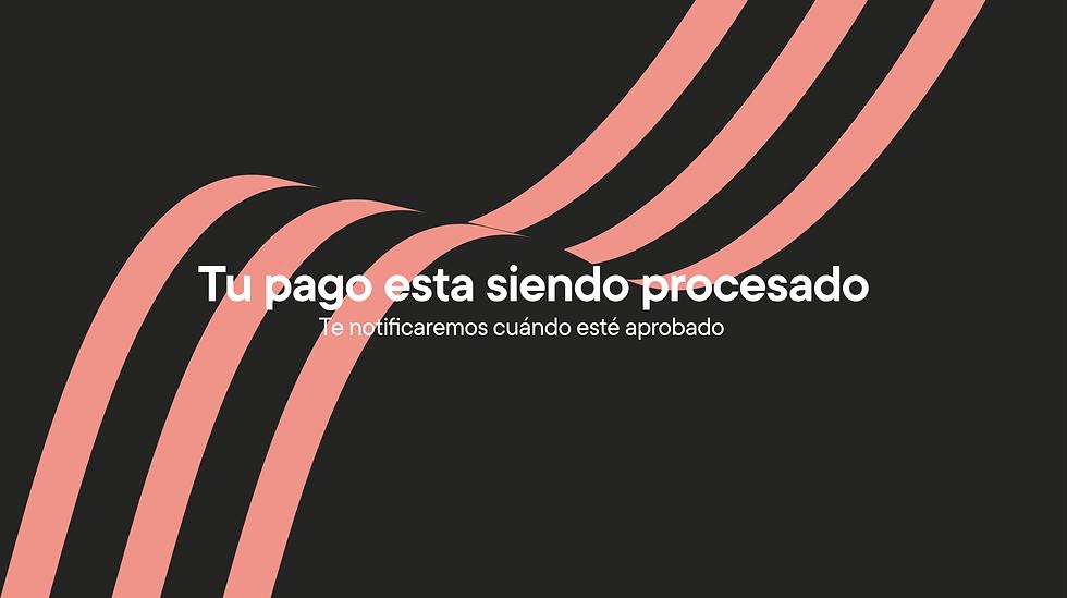 MICROSITIO PAGOS -09.png