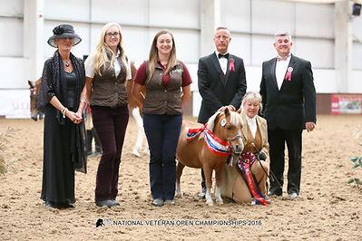 Veteran Horse Society 2016 Longmeadow Charles Supreme Fi