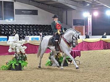 Veteran Horse Society Emma Taylor