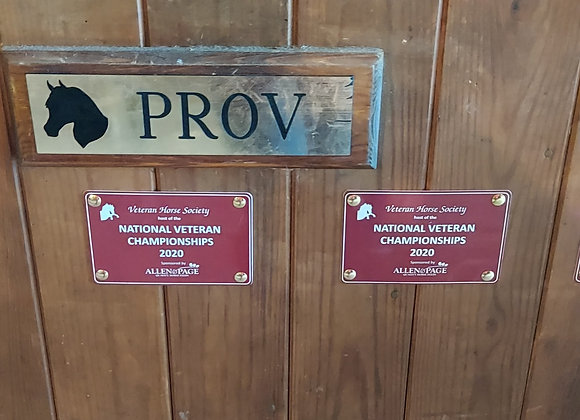 Stable Plaque