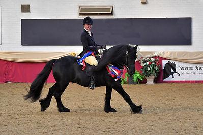 Veteran Horse Society Nation Championships