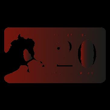 VHS 20th logo plaque gradient-12.png