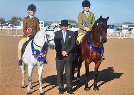 Outdoor veteran horse society judging show