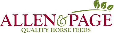 allen-and-page-logo