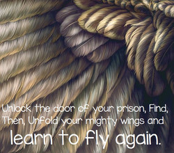 learn to fly again