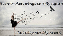 Even broken wings can fly again