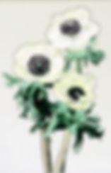 Anemone.jpeg