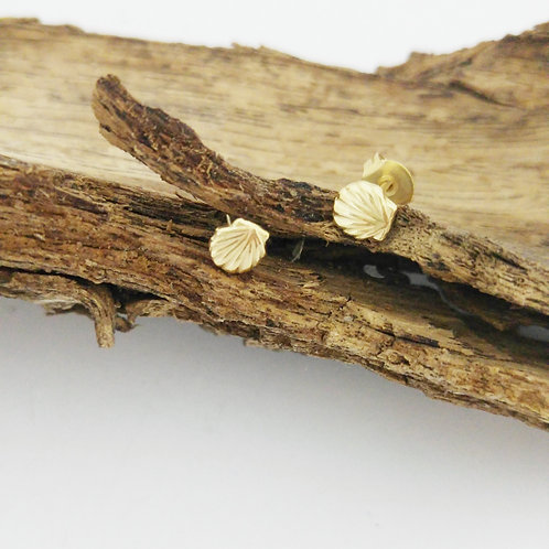 עגילי צדפה בציפוי זהב