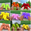 Thumbnail: Teddy Bear Slippers