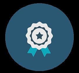 en blå och vit medalj med en stjärna i mitten