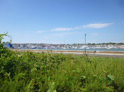Cowes Harbour, view from cottage