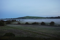 Culver Down in the mist