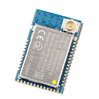Bluetooth modul (Raytac)