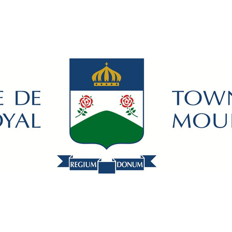 Renovations that don't require a Permit in the Town of Mount-Royal (TMR)
