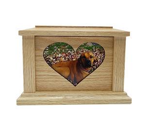 Heart Oak 1.jpg