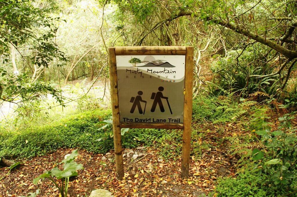David Lane Trail