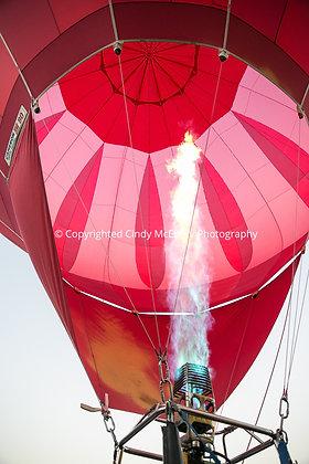 Balloon Festival #16