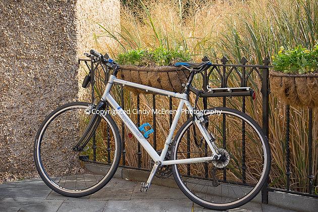 Washington DC Bike #12