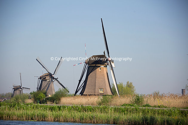 Kinderdijk Windmills #12