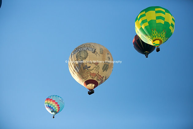 Balloon Festival #23